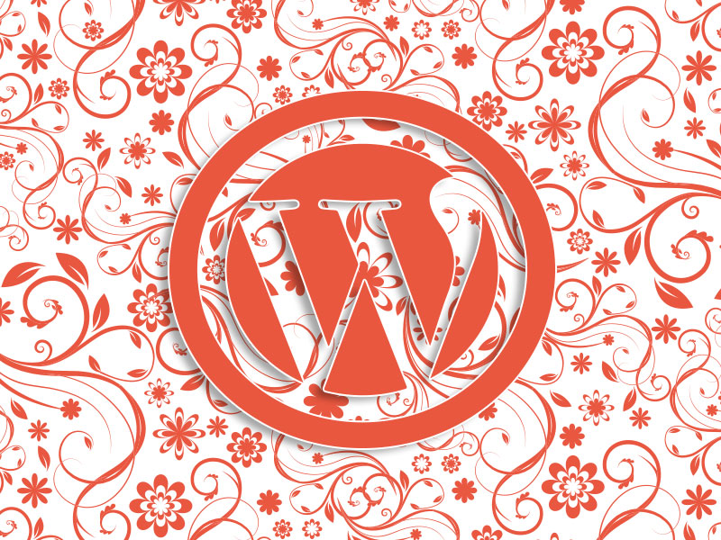 jei-communicatie-WordPres-training-Groningen-1